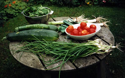Vegetables on a garden table